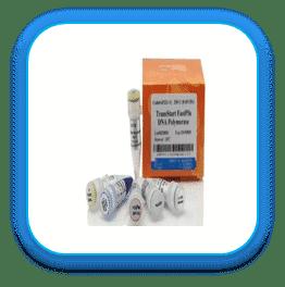 آنزیم Pfu پلیمراز